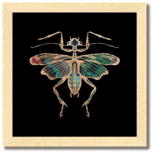 10 inch square Gold Foil Galactic Cricket Fine Art Print by Aimee Schreiber, galaxy gold leaf ink in natural maple wood frame