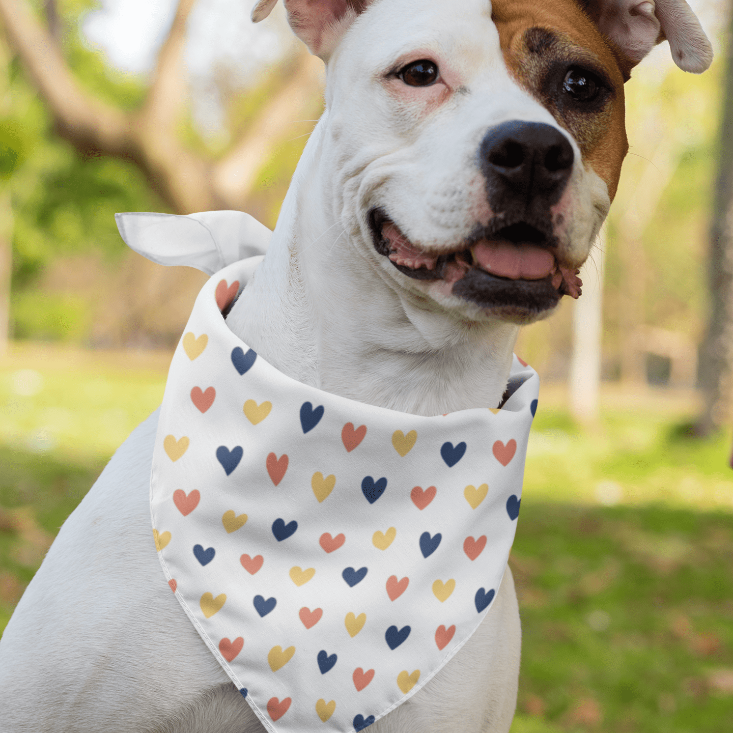 Multicolor Mini Heart Dog Bandana - With or Without Collar