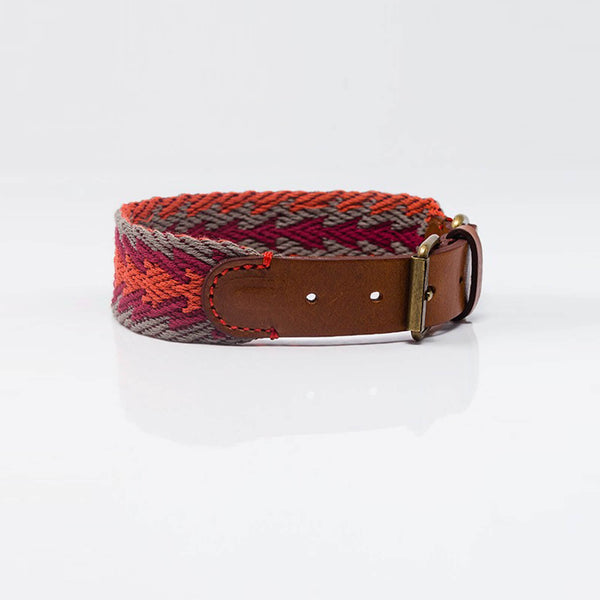 Buddys Hundehalsband Peruvian Arrow Orange Rückseite