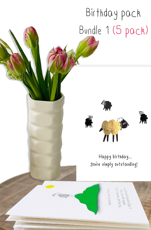 Birthday card bundle a - 5 pack