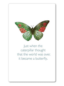 Just when the caterpillar - Magnet