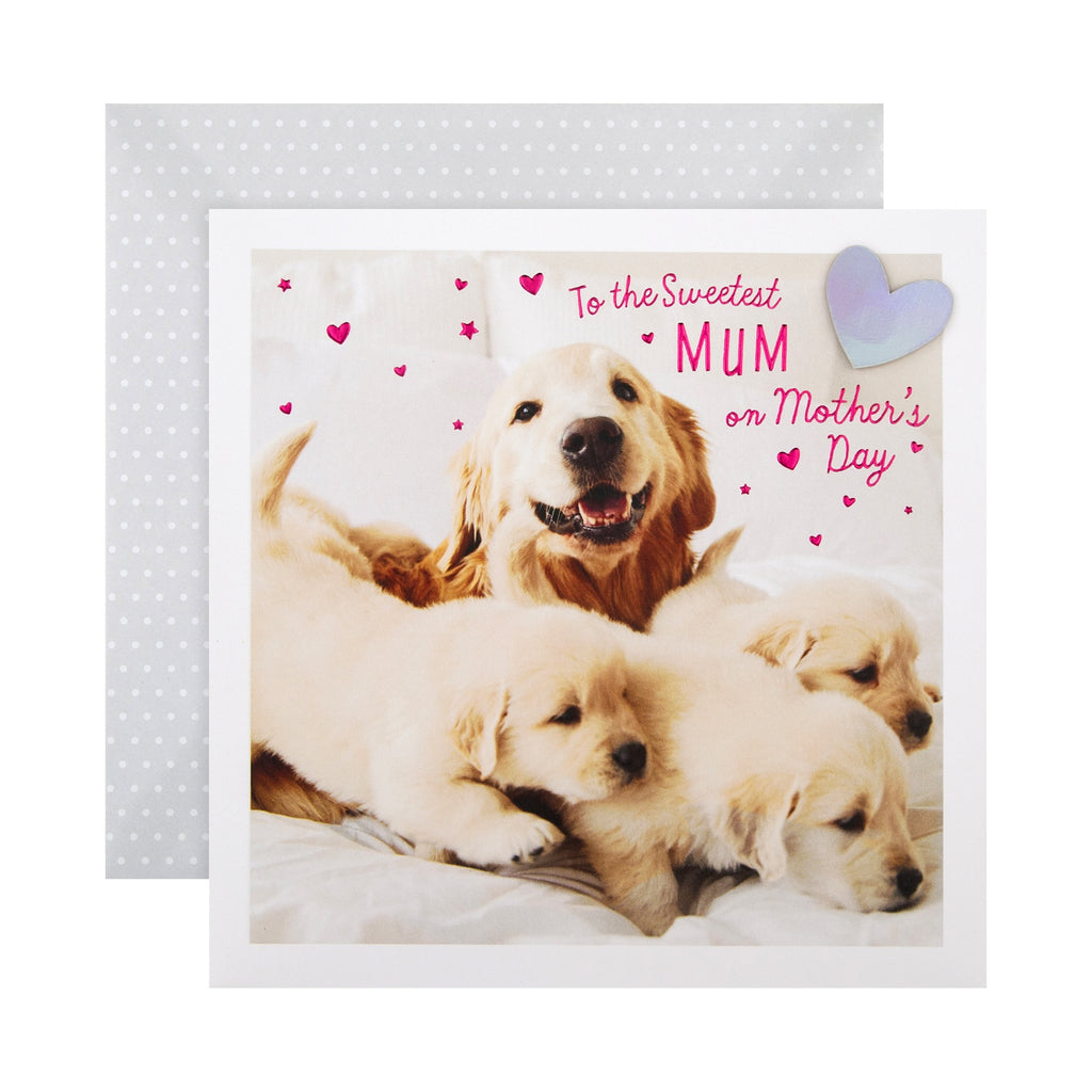 100% Recyclable Mother's Day Card for Mum - Cute Photographic Design