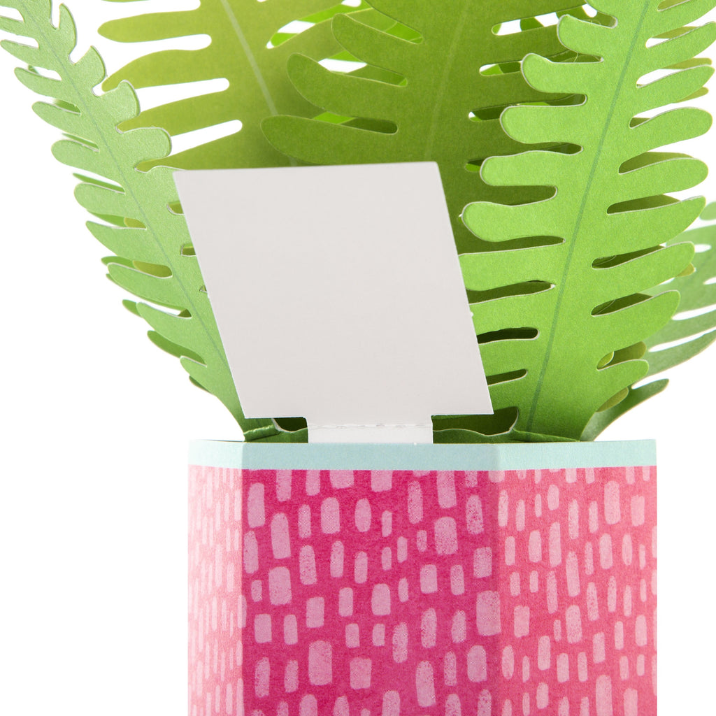 100% Recyclable Mother's Day Card - Pop-up Plant Design