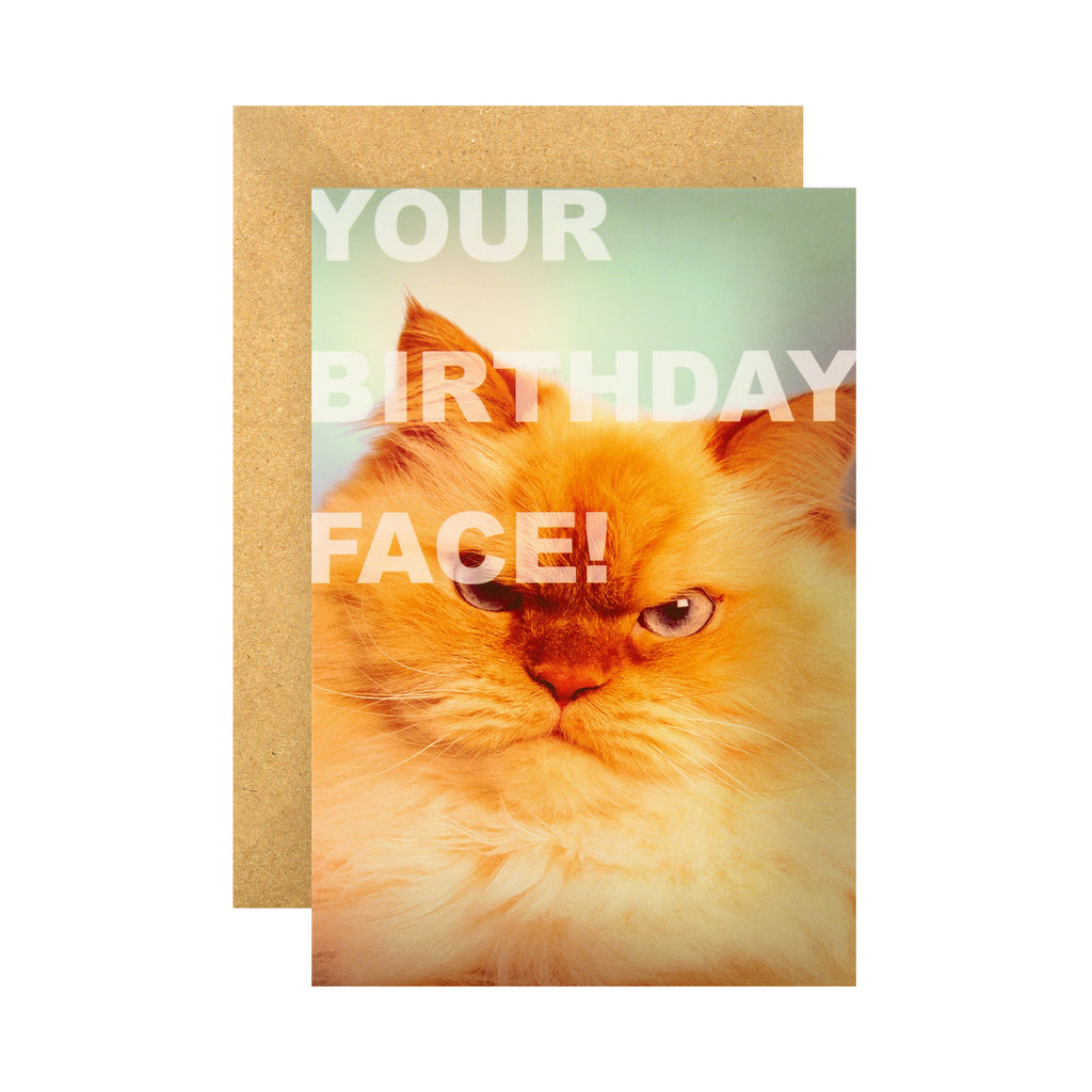 Funny Birthday Card - Grumpy Cat Face Shoebox Collection Design