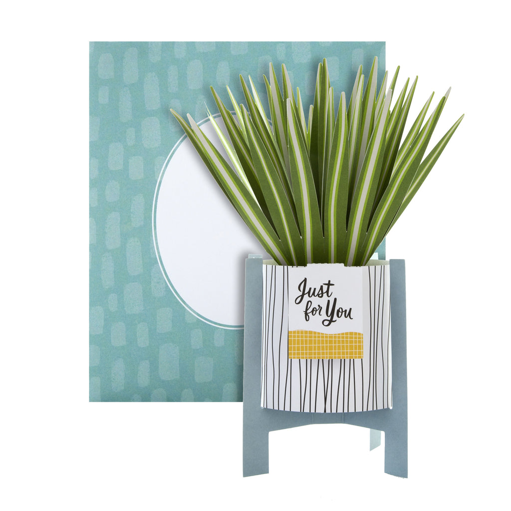 Pop-up Plant Card - Spider Plant Design