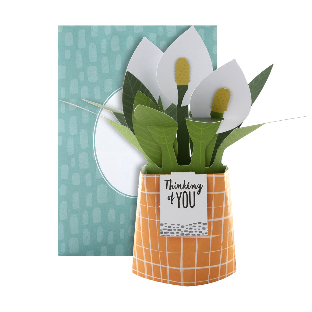 Pop-up Plant Card - Peace Lily Design