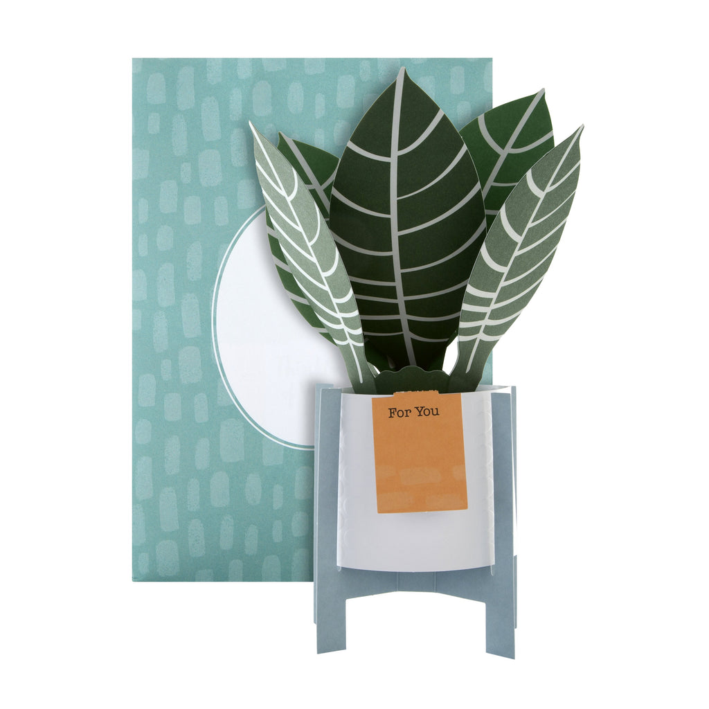 Pop-up Plant Card - Zebra Plant Design