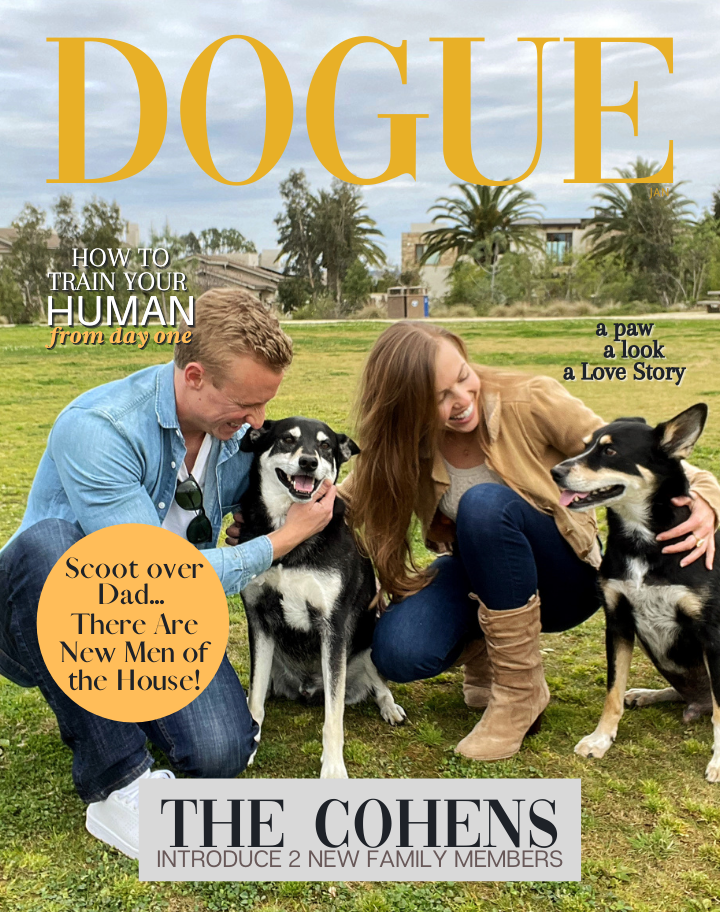 Just the JPEG: Fido Family Photo Theme Digital Personalized Dog Magazine-Style Portrait - DOGUE By Gina