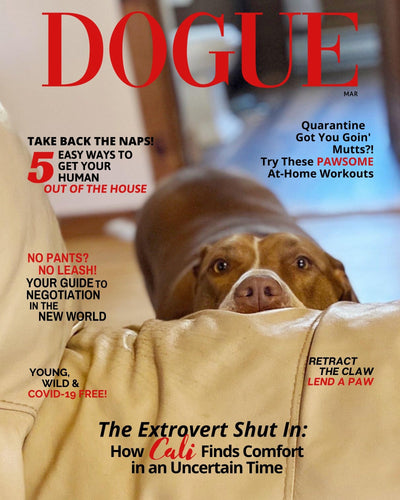 *NEW Faux DOGUE Magazine Cover: Quarantine Edition - DOGUE By Gina