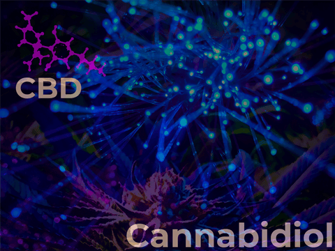 CBD Hemp Flower Effects
