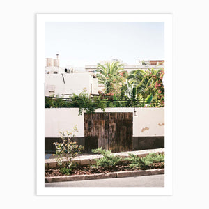 Botanical backyard Ibiza | Spain fine art photography print