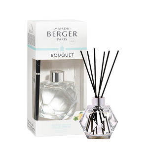 Geometry Pre-filled Clear Reed Diffuser - Zest of Verbena