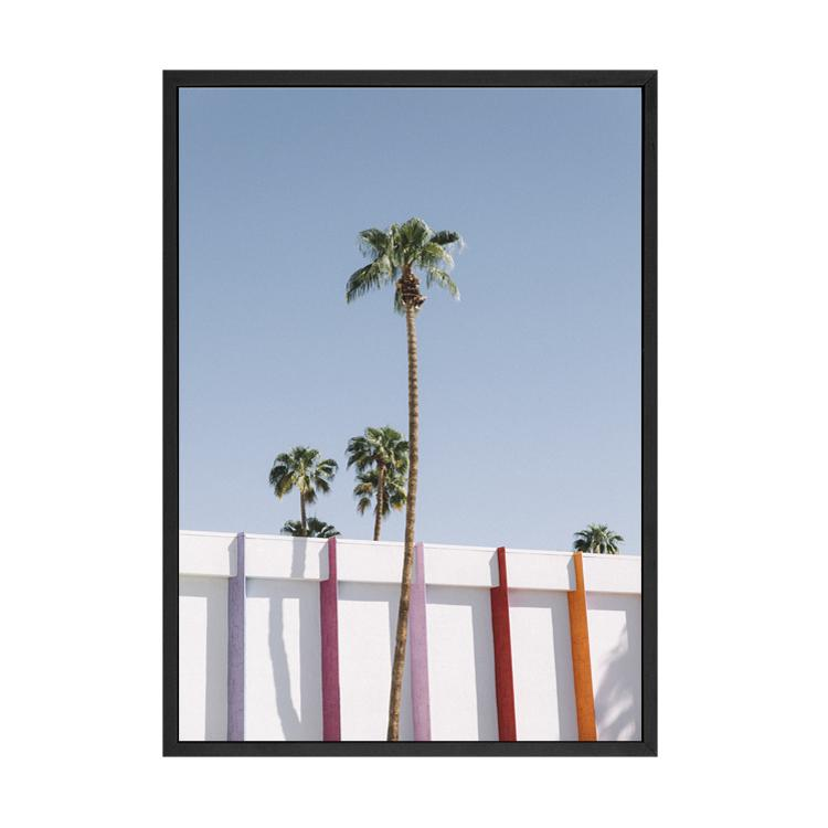 PALM SPRINGS X SOPHIE