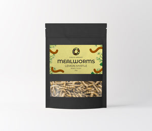 Lemon Myrtle Mealworm Snacks