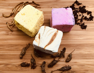 Edible Insect Marshmallows- 3 pack