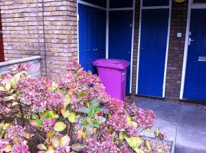 Pink Dustbins