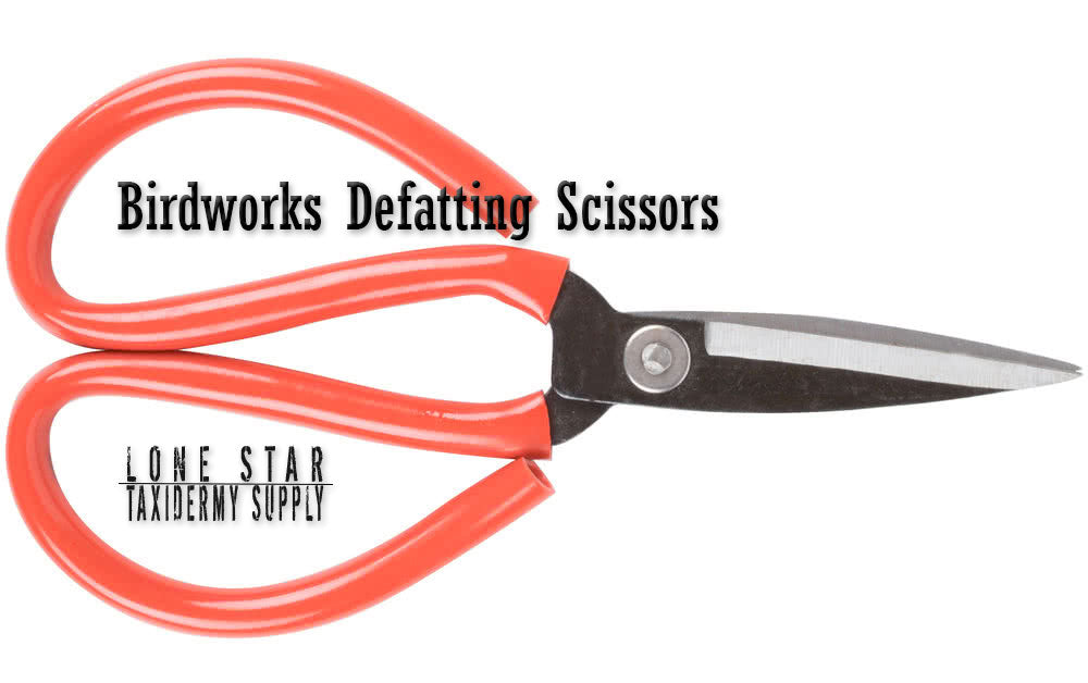 Birdworks Scissors