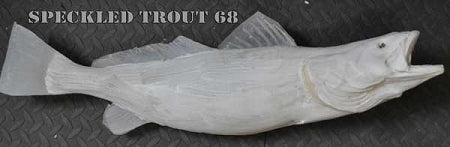 Speckled Trout 68 -- 26 x 14