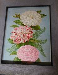 1880s print -  Japan Camellias