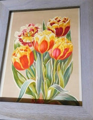 1880s print -  Variegated Foliage Tulips