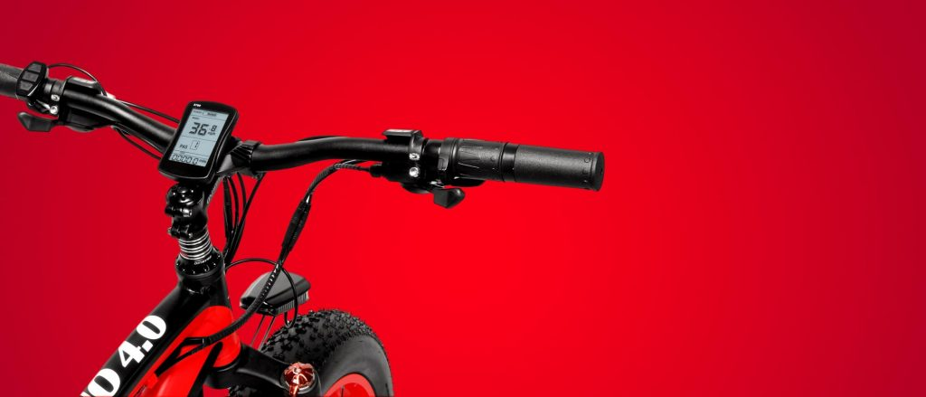 RUBINO 4.0 FAT TIRE E-BIKE