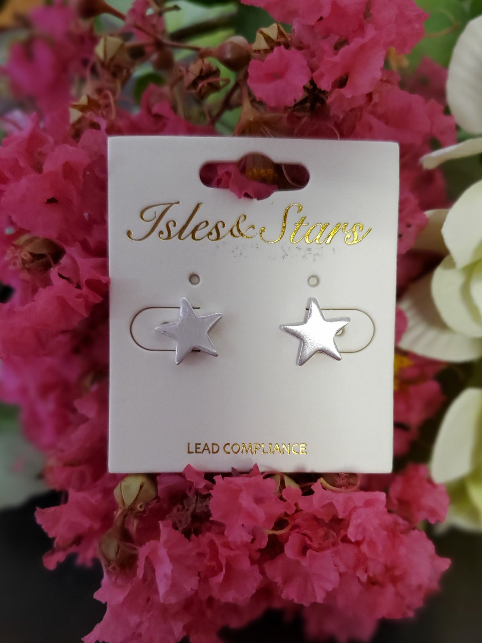 Star Button Stud Earring