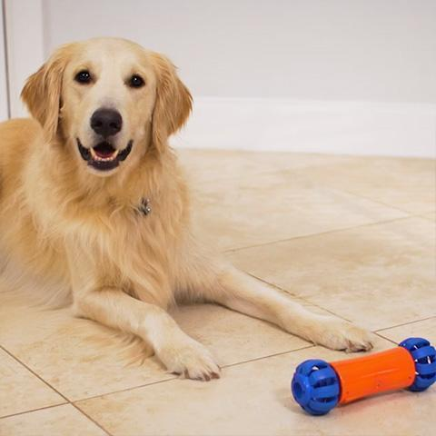 Automatic Interactive Dog Bone- Best partner of dogs!