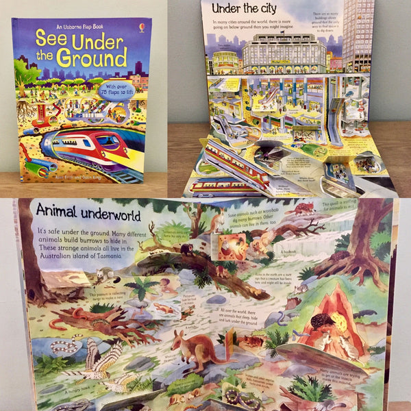 Usborne See Under the Ground