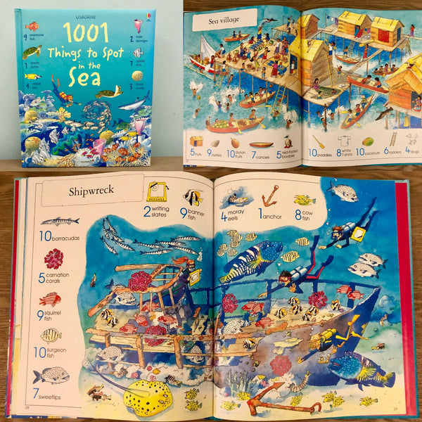 1001 Things to Spot in the Sea