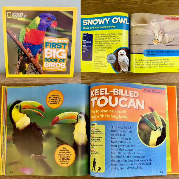 Little Kids First Big Book of Birds