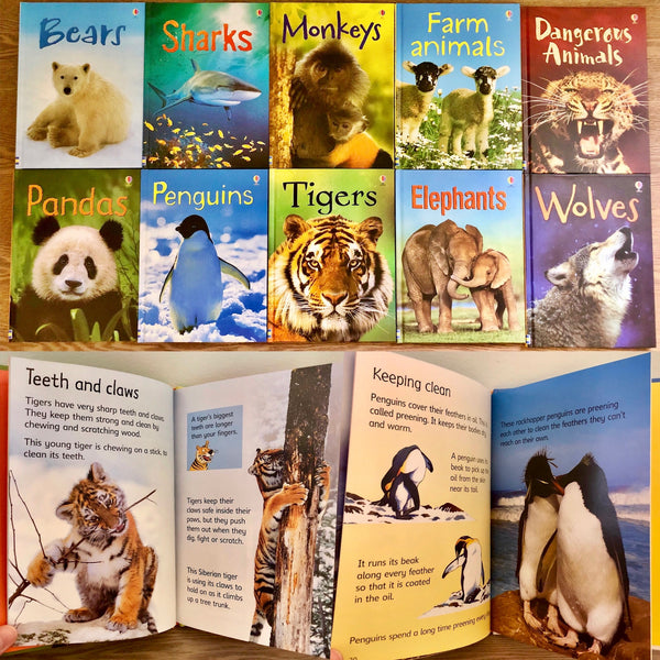 Usborne Beginners: Animals