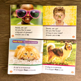Nonfiction Sight Word Readers Levels C and D Set