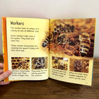 Usborne Beginners Nature