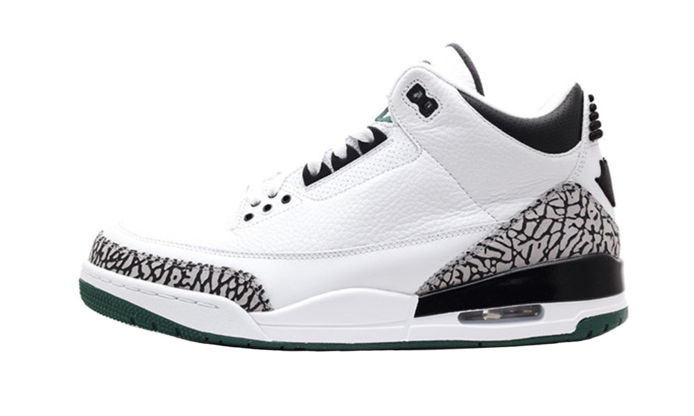Air Jordan 3 PE Oregon Ducks