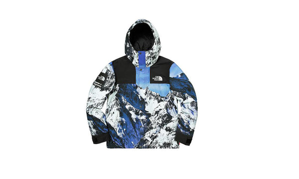 Supreme x The North Face Mountain Print Parka - Vintage 10/10