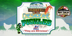 Pickles - Taste of the Chesapeake