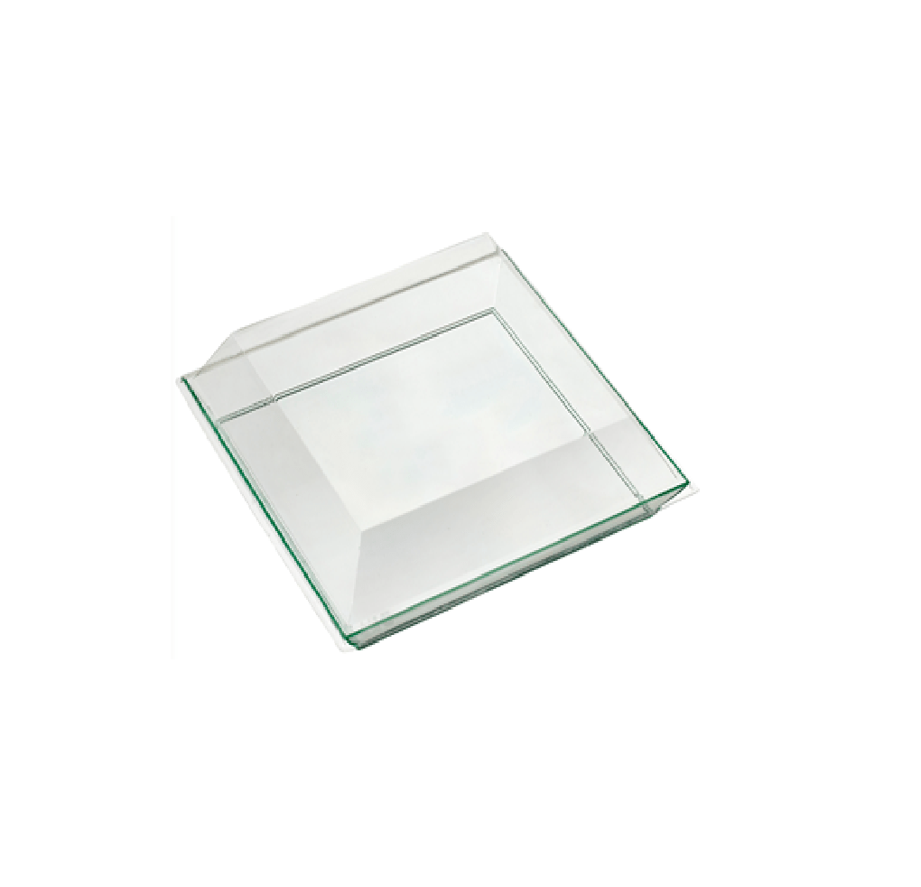 Vendome Tray Transparent Green 50pcs - Gourmet de Paris : French Food
