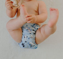 Load image into Gallery viewer, Perfect Bamboo Nappies Blue