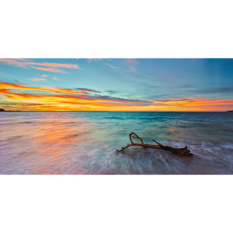 Orange sunset over driftwood at Mindil Beach