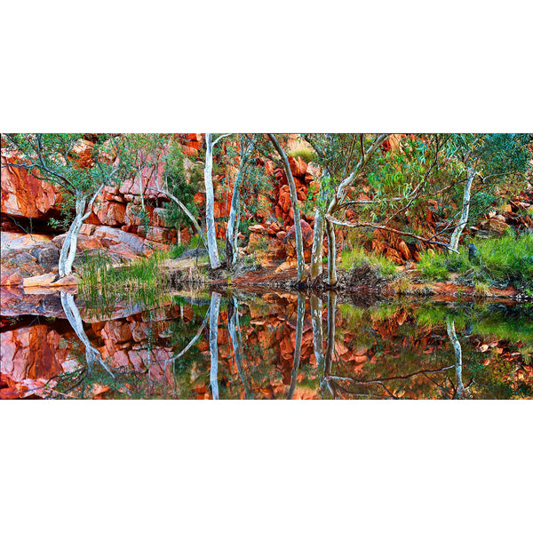 Perfect reflections of rock face and trees in Central Australia.