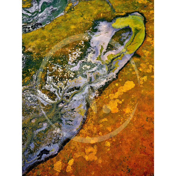 Aerial artwork of a billabong, in the shape of a turtle, reaching up on to the floodplains of the South Alligator River, Kadadu National Park.
