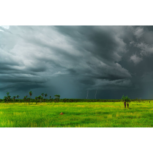 Storm clouds overhead as twin lightning bolts strike the iridescent green carpet of grass on a Territory floodplain.