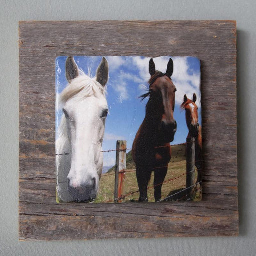 All Ears - On Barn Board 1024 - Artfest Ontario - Art On Stone - Photography
