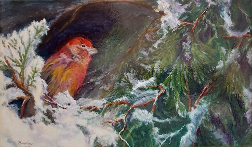 BACKYARD HOUSEFINCH - Artfest Ontario - BC's Art Studio - Paintings