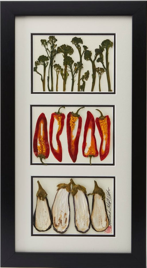 Broccoli, Red Peppers, and Eggplant - Artfest Ontario - Botanical Art By Diane - Vegetable Art