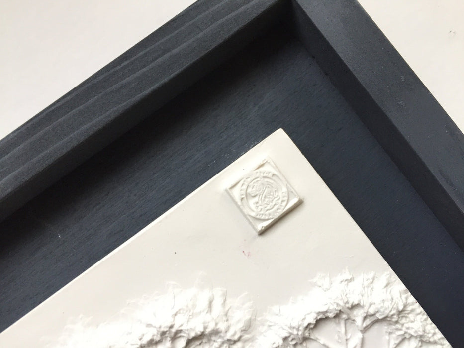 Framed Botanical Cast - Black Wash - Artfest Ontario - Botanical Art By Diane - Botanical Casts