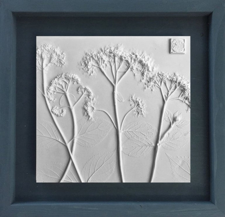 Framed Botanical Cast - Slate Blue - Artfest Ontario - Botanical Art By Diane - Botanical Cast