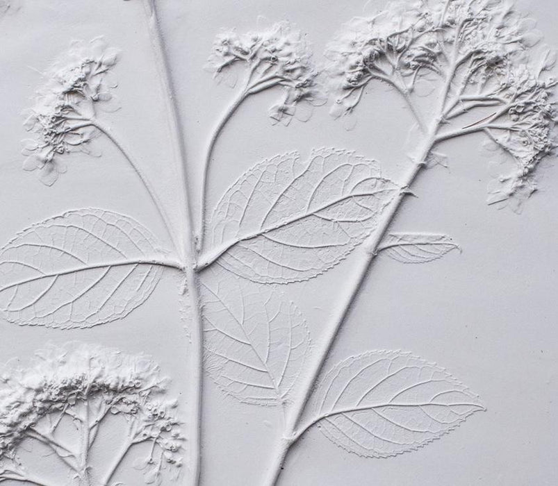Hydrangea Large Botanical Cast - Artfest Ontario - Botanical Art By Diane - Botanical Casts