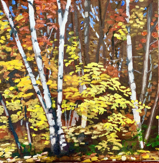 Killbear Birch in the Fall, Kilcoursie Bay - Artfest Ontario - Lynne Ryall Art - Paintings, Artwork & Sculpture