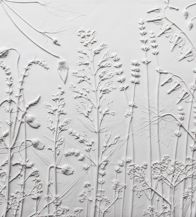 Large Cottage Garden, Option Three - Artfest Ontario - Botanical Art By Diane - Botanical Casts